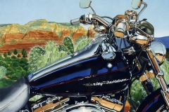 Sedona Softail, collection of the artist.